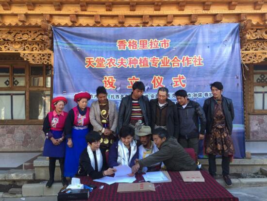 京津企业家抱团赴云南迪庆纳帕村扶贫