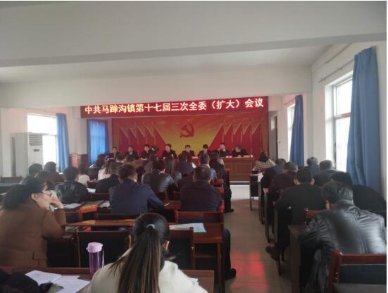 马蹄沟镇2018年度经济工作会